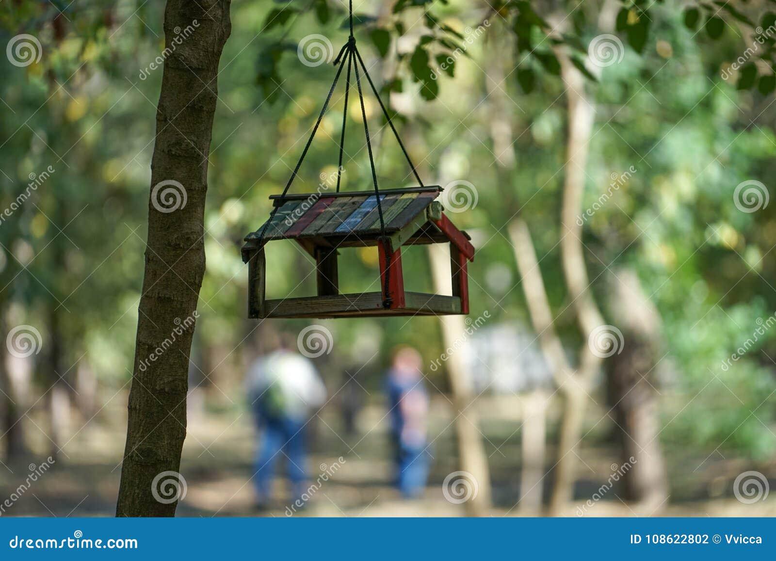 Alimentador do pássaro que pendura no parque do outono entre as árvores no fundo borrado no dia morno do outono