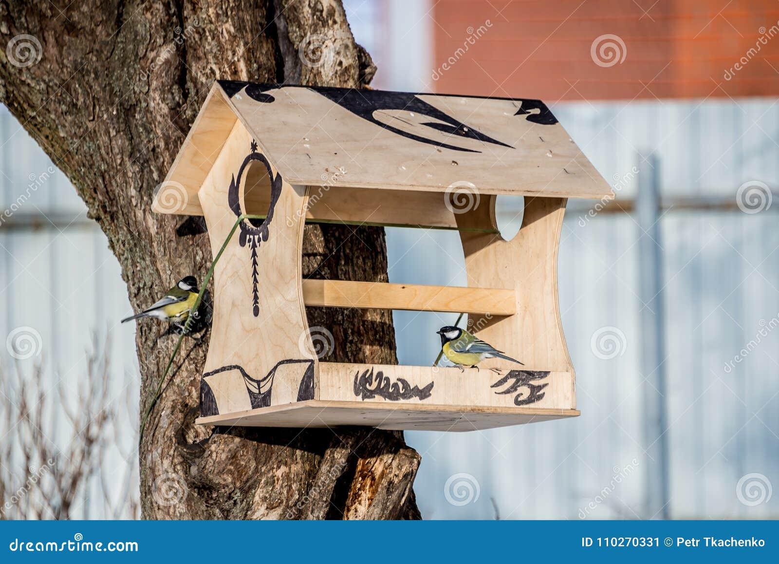 Alimentador para pássaros