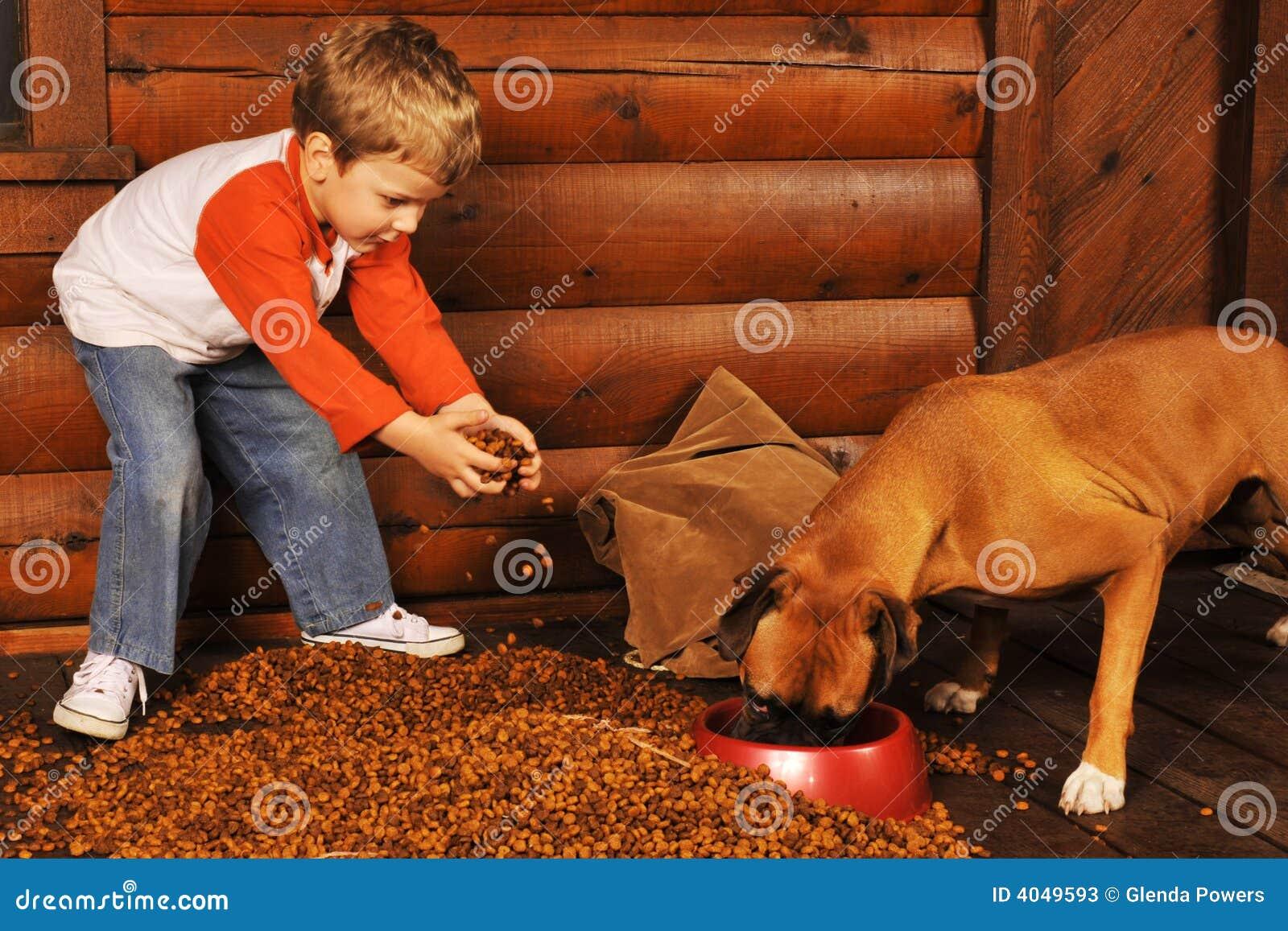 Alimentando o cão