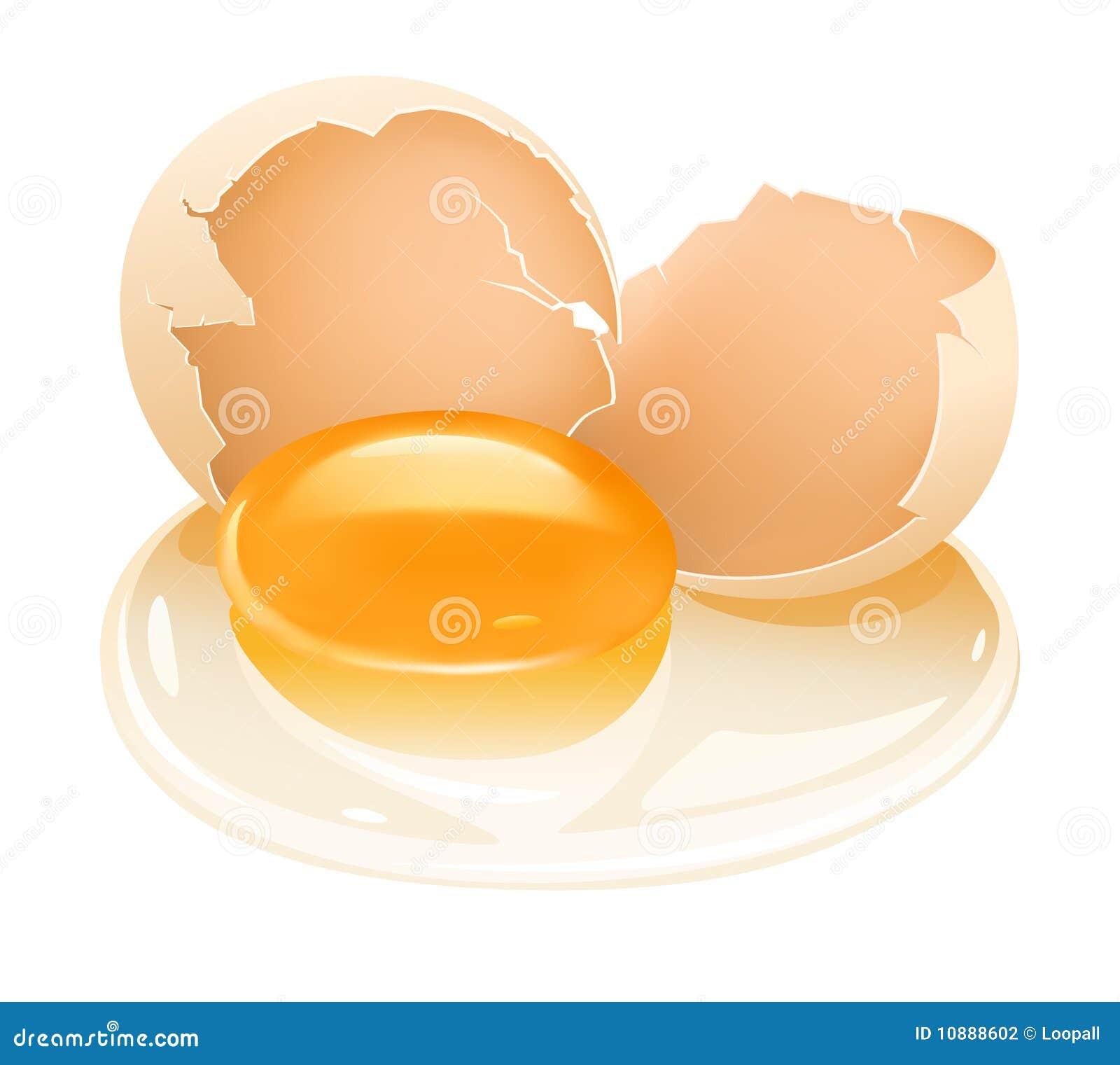 Alimento agrietado del huevo de gallina con la yema de huevo y el albumen