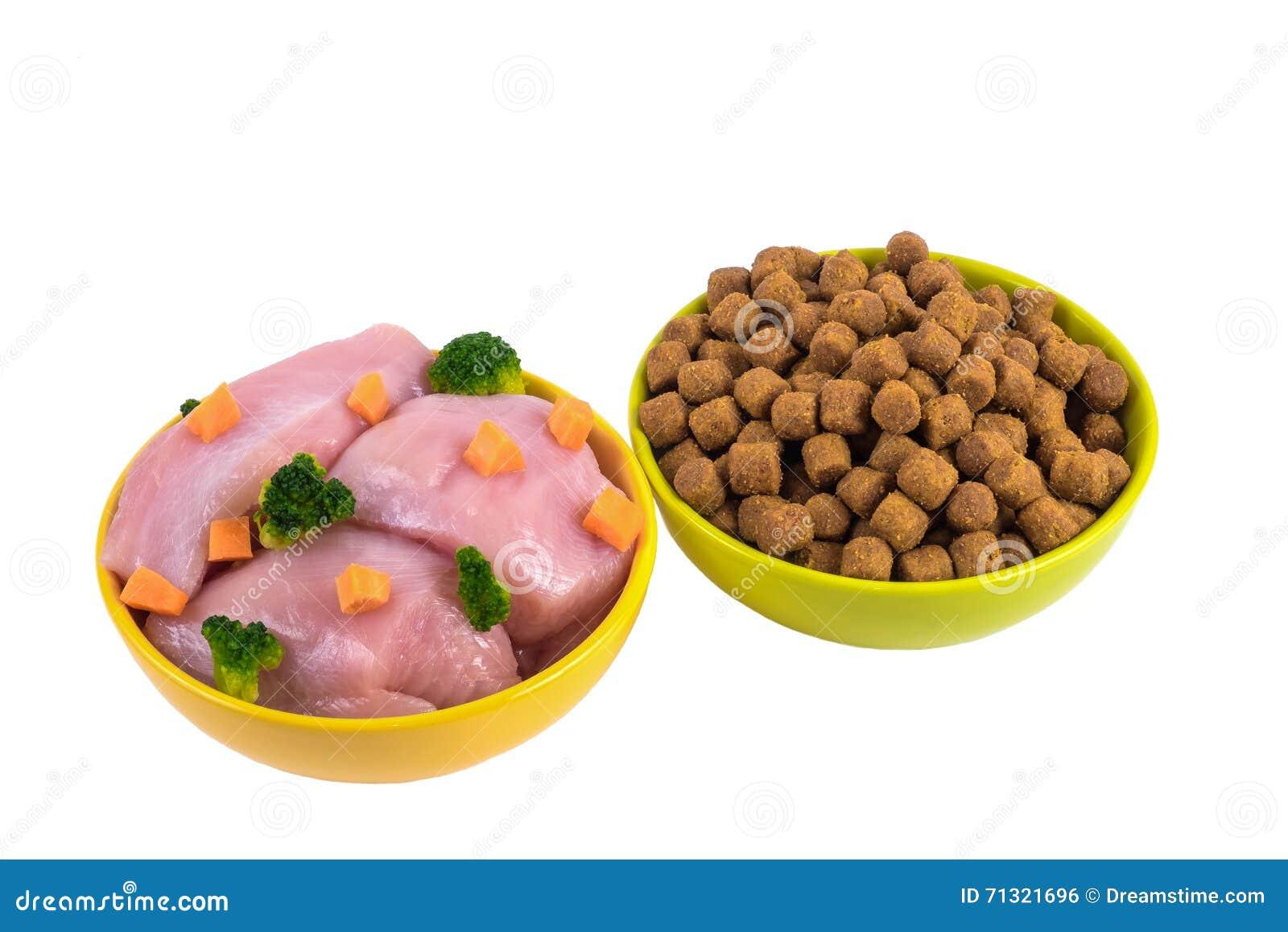 Alimento para cães seco e alimento para cães natural em umas bacias cerâmicas isoladas em w
