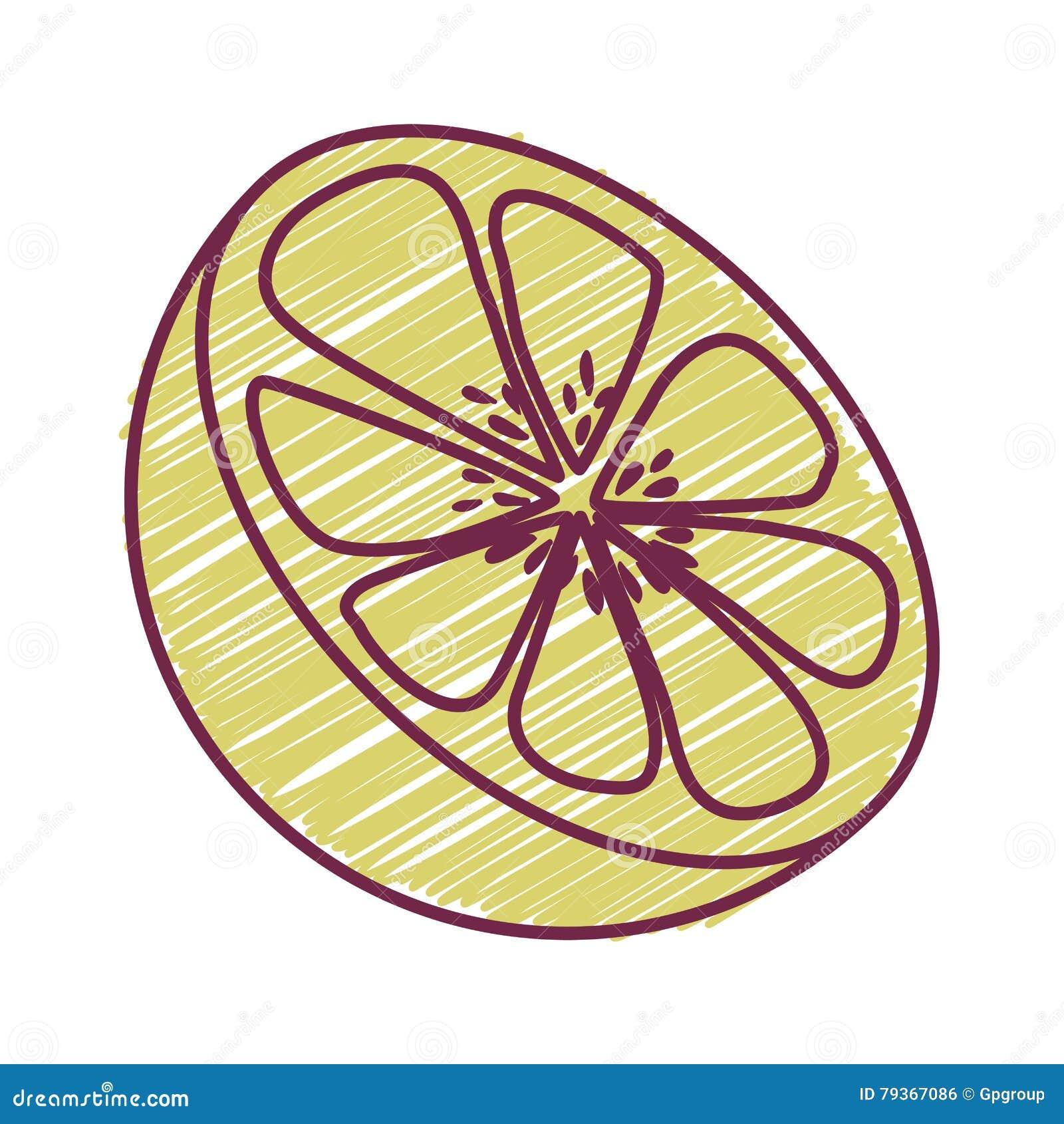 Alimento saudável do fruto