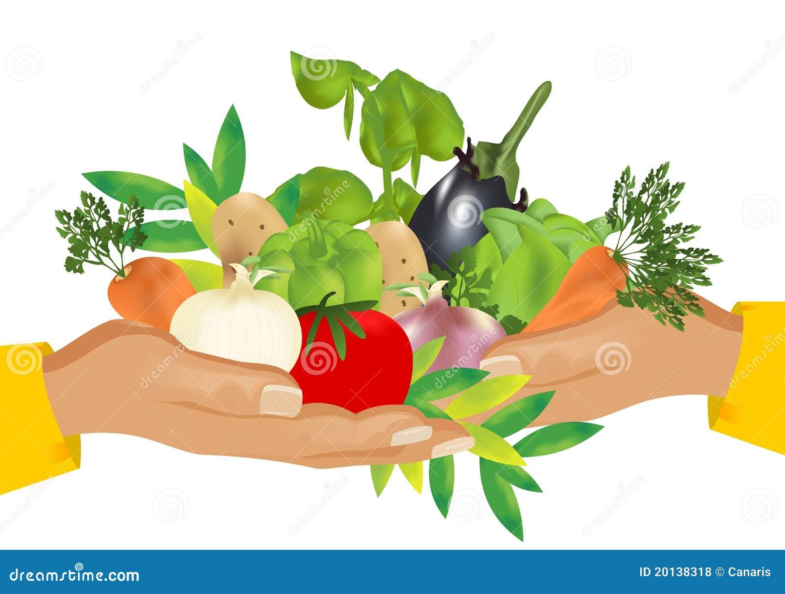 Alimento saudável (vegetais), vetor dos cdr