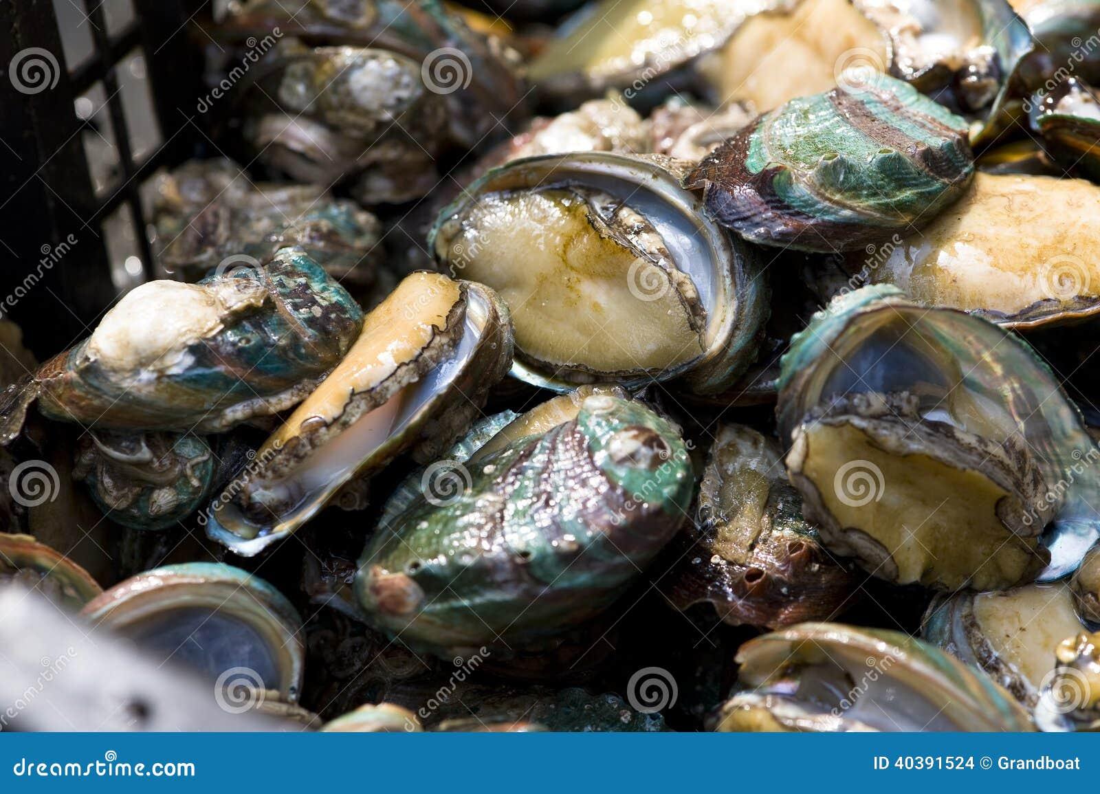 Aliotide nel mercato del prodotto acquatico