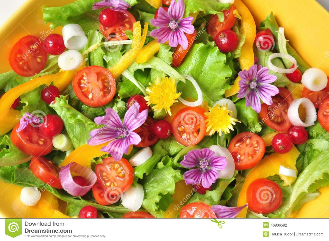 healthy salads with fruit colorful fruit