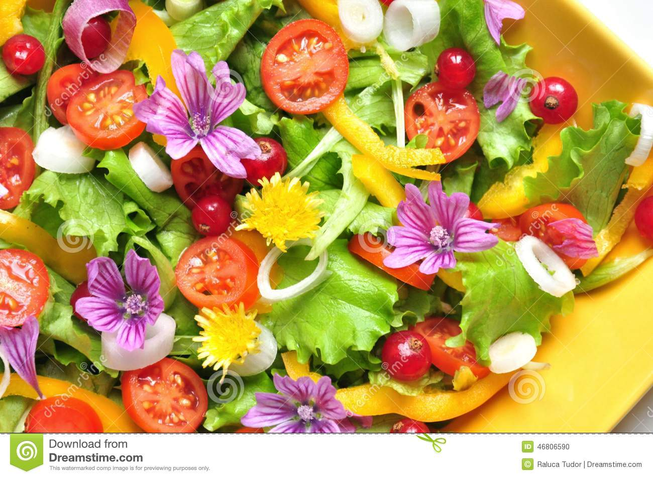 Raw Food Fruit Salad Recipe
