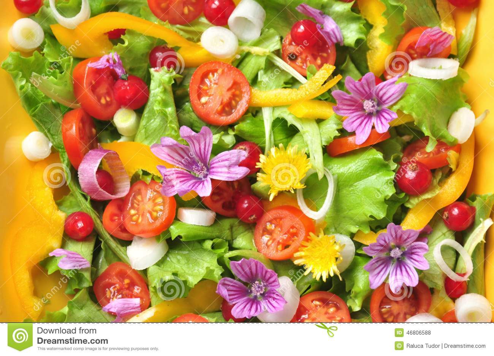 Alkalische Kleurrijke Salade Met Bloemen Fruit En