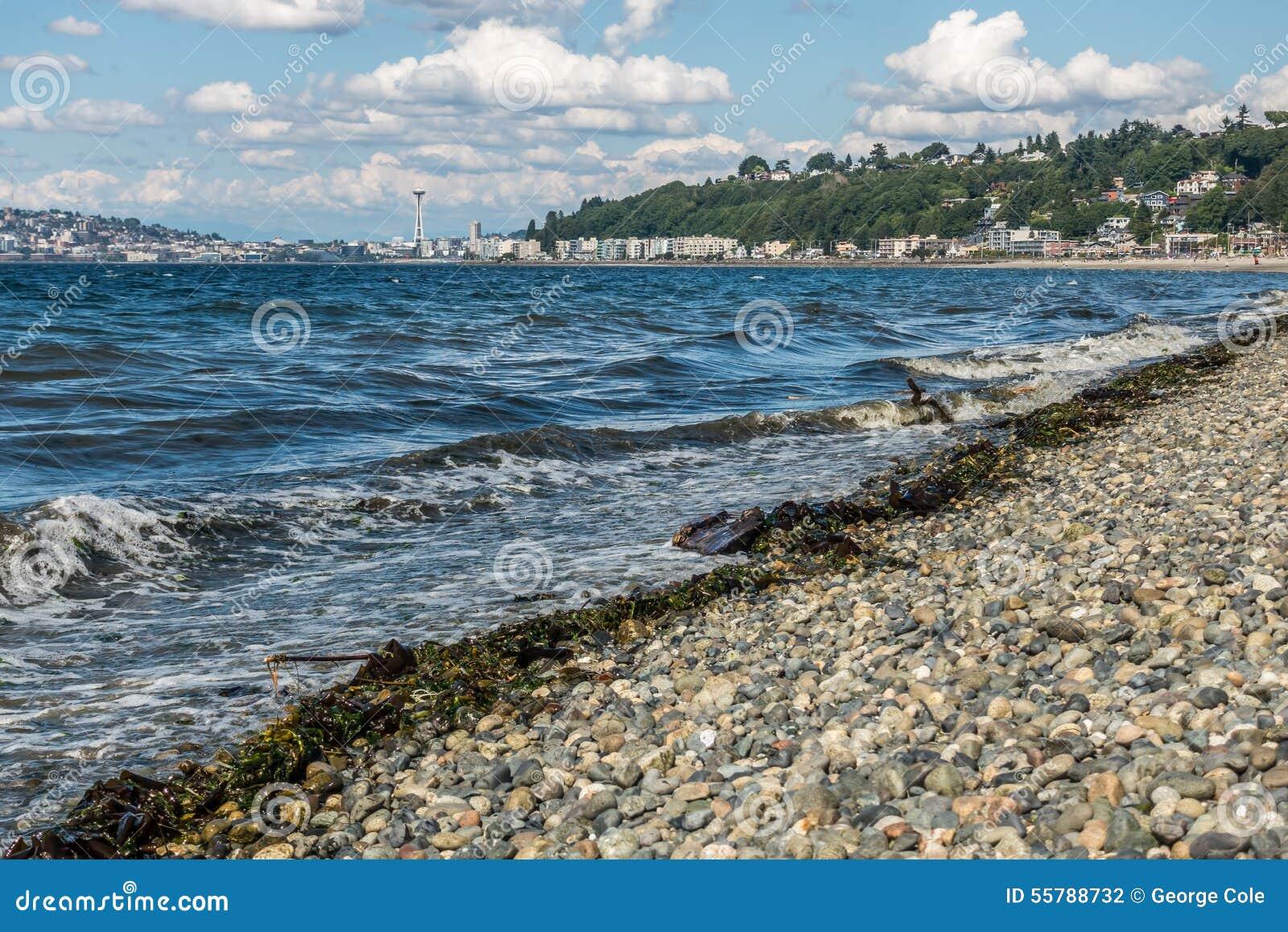 Alki Beach In West Seattle 2