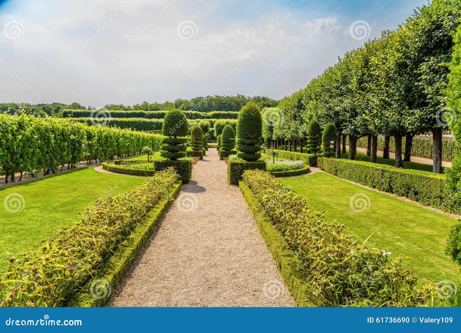 Allée Avec Les Arbres Et Les Arbustes Coupés Dans Les Jardins Du ...