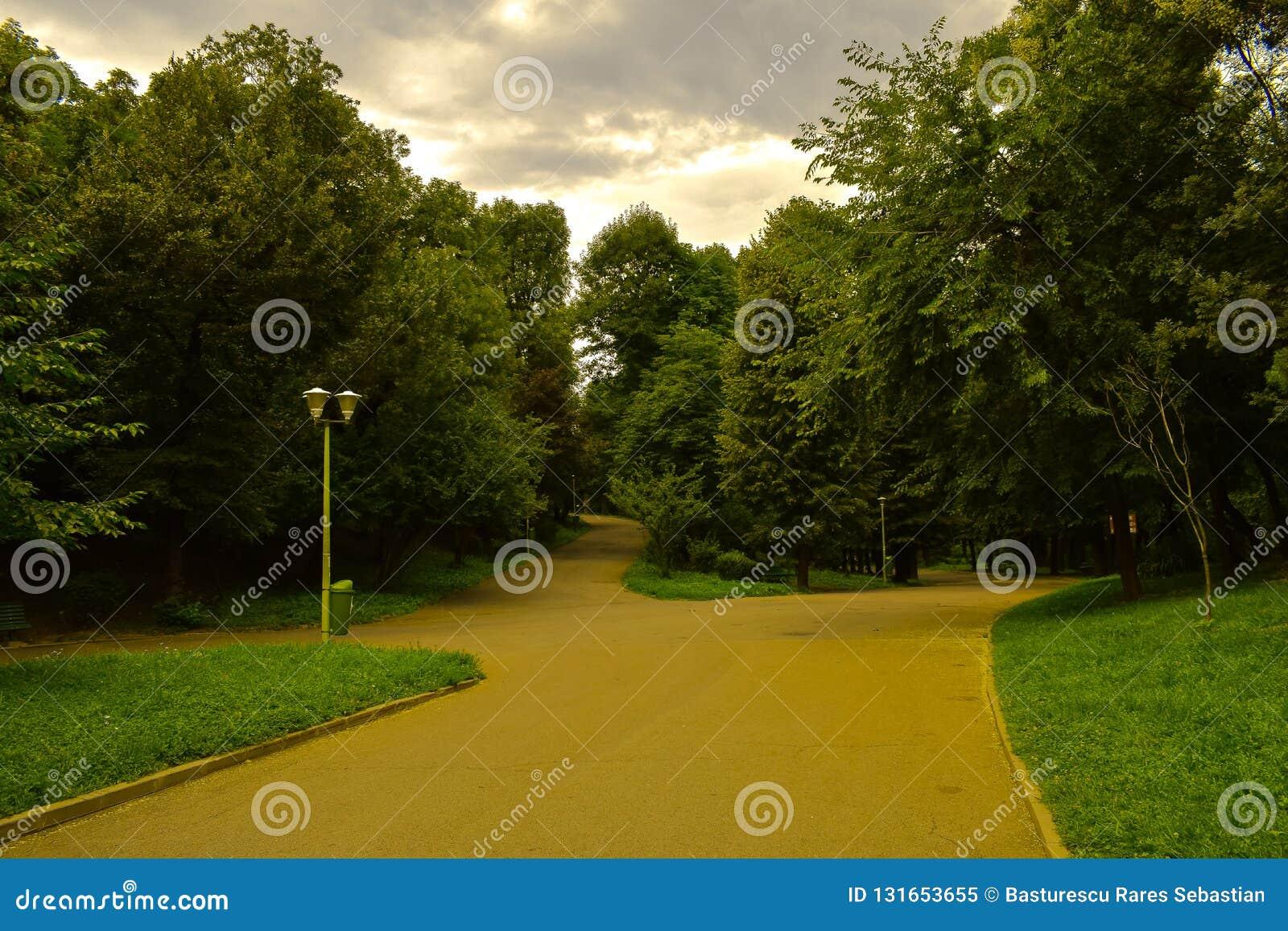 Allées de parc de ville un jour nuageux Forêt verte
