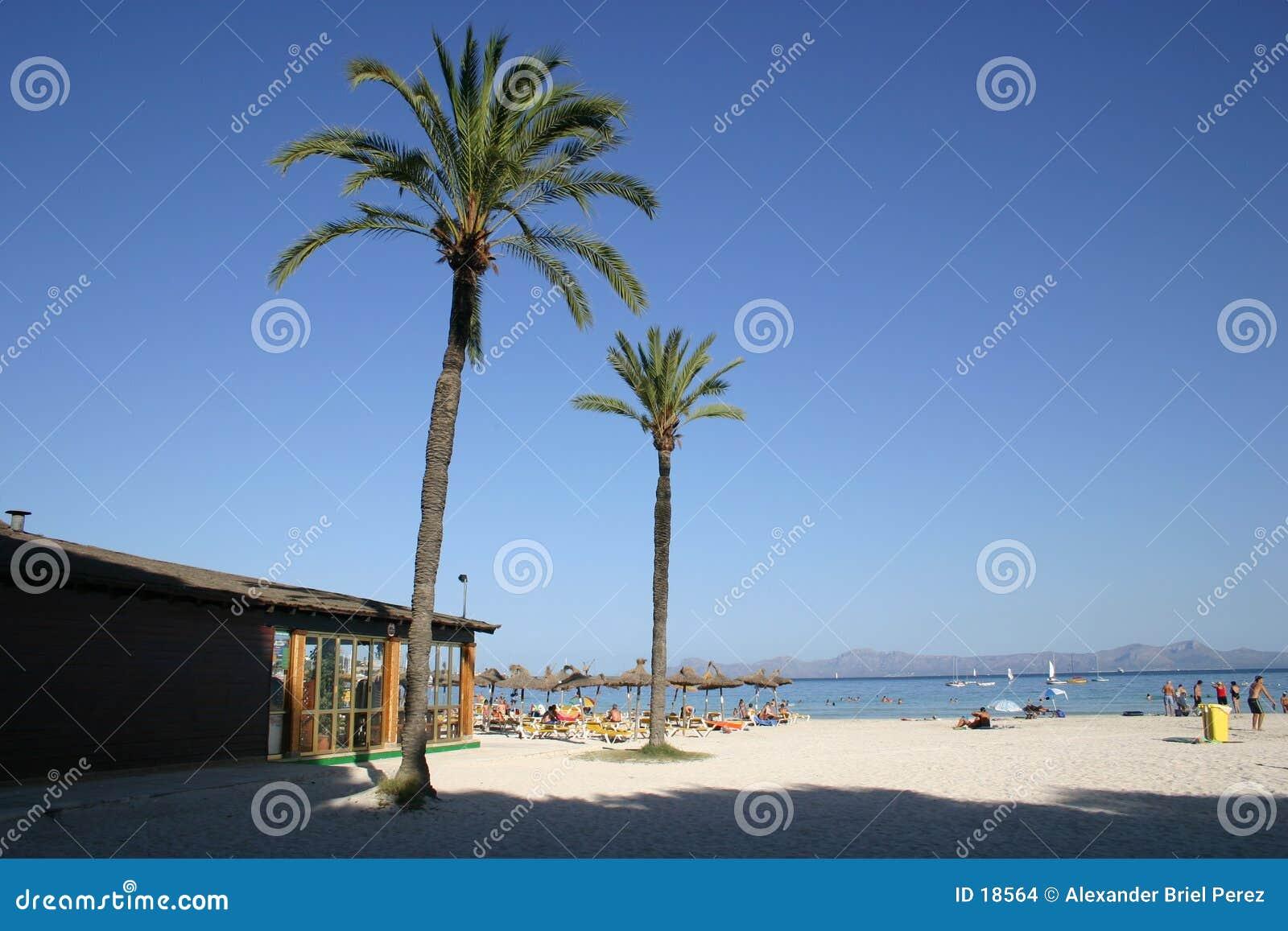 Alla spiaggia