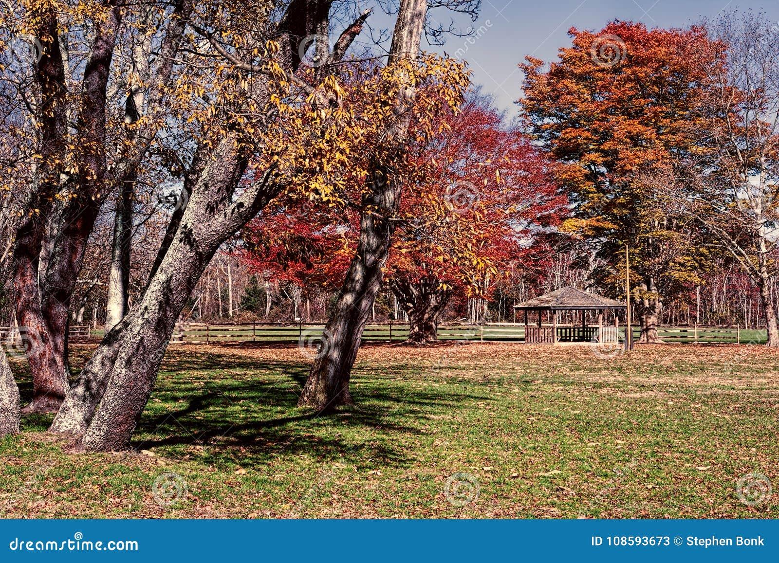 Allaire park w Howell Nowym - bydło jeżeli spadek