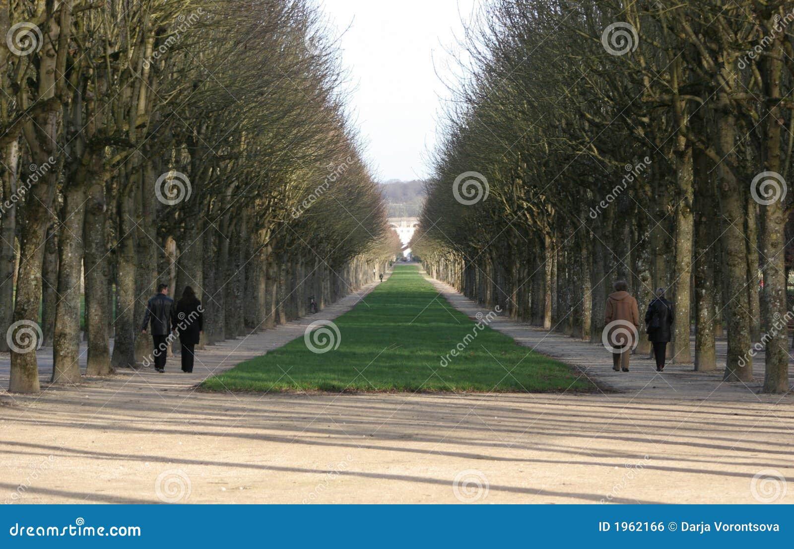 Alle a Fontainebleau