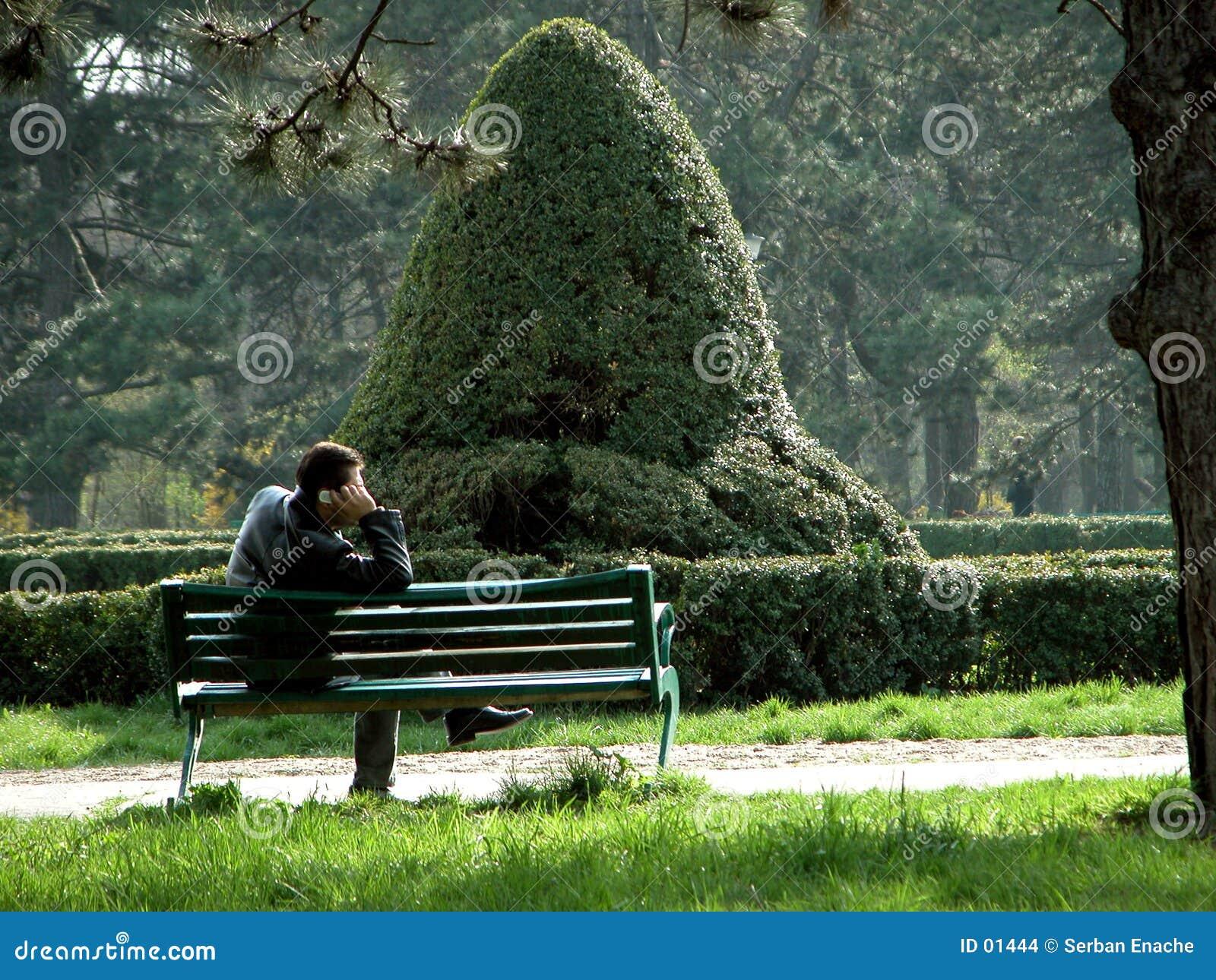 Alleen in het park