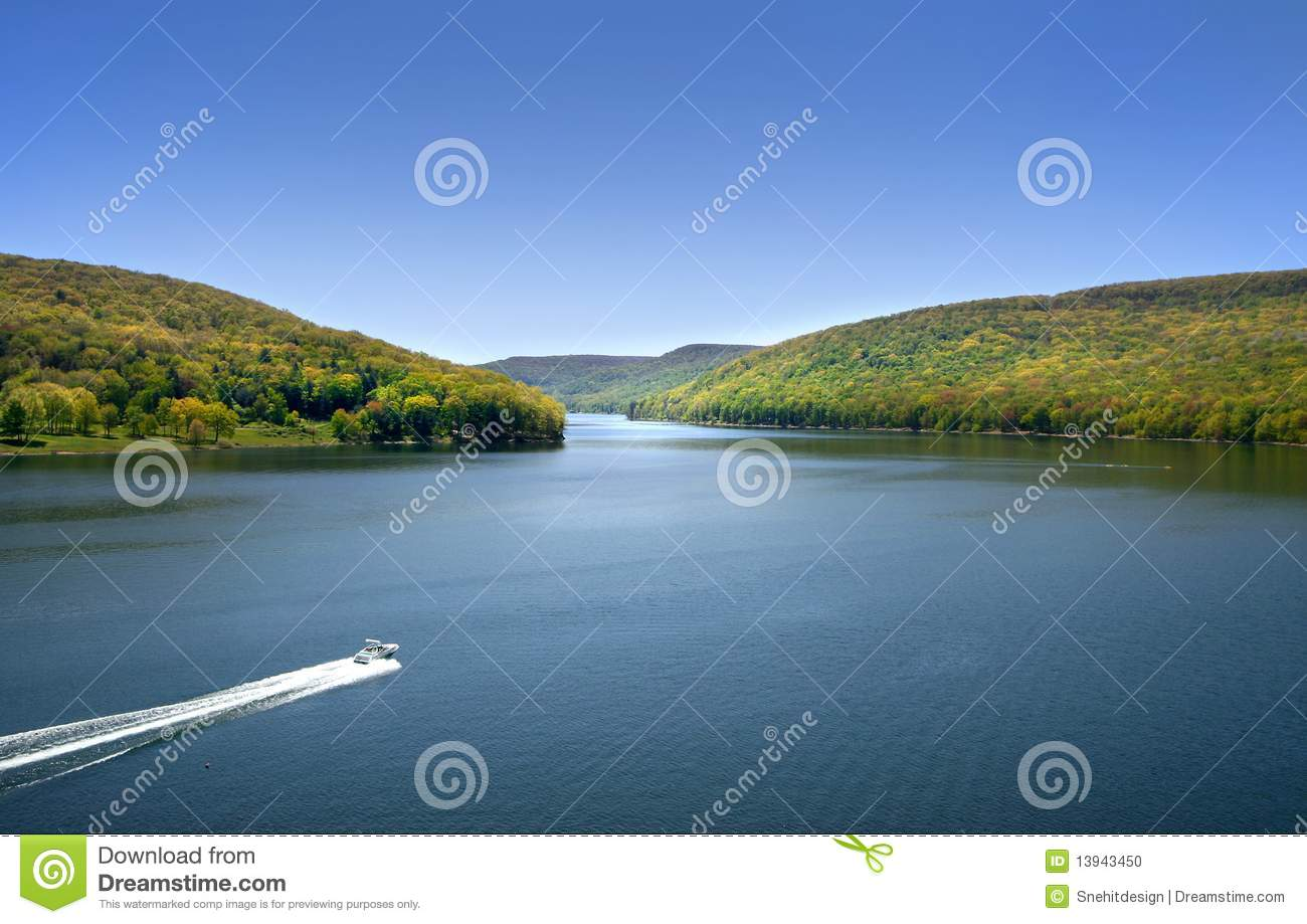 Allegheny national forest stock photo  Image of spring