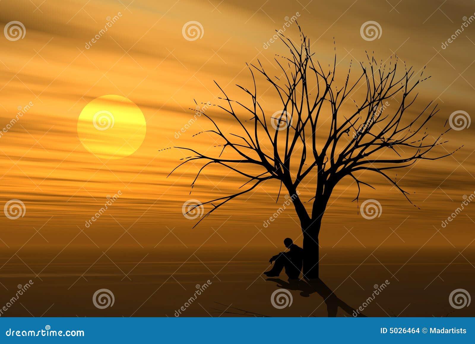 Alleine unter Baum am Sonnenuntergang