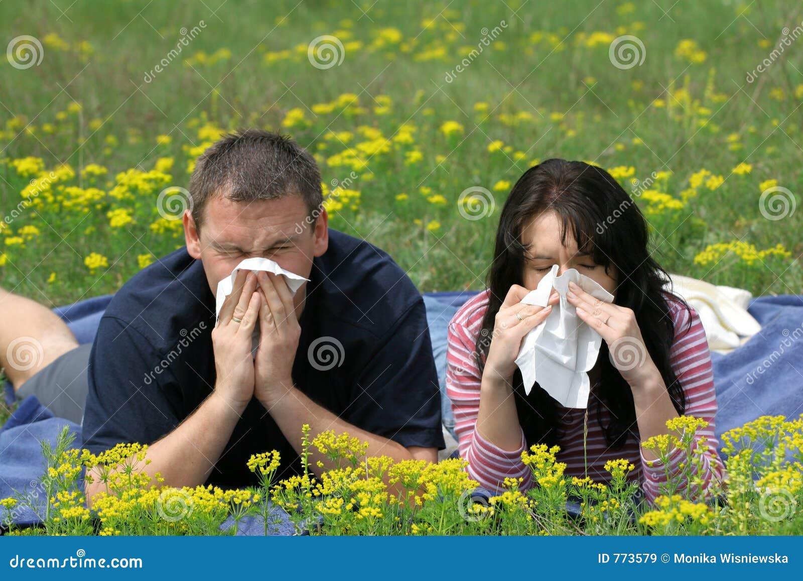 Allergilidande person