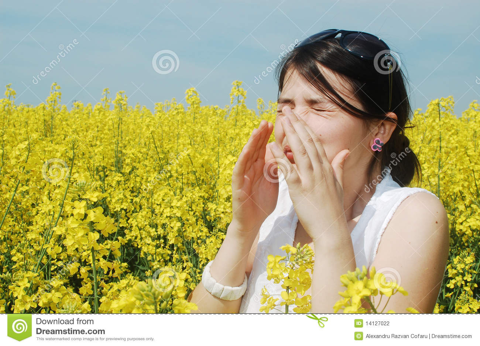 Allergipollen