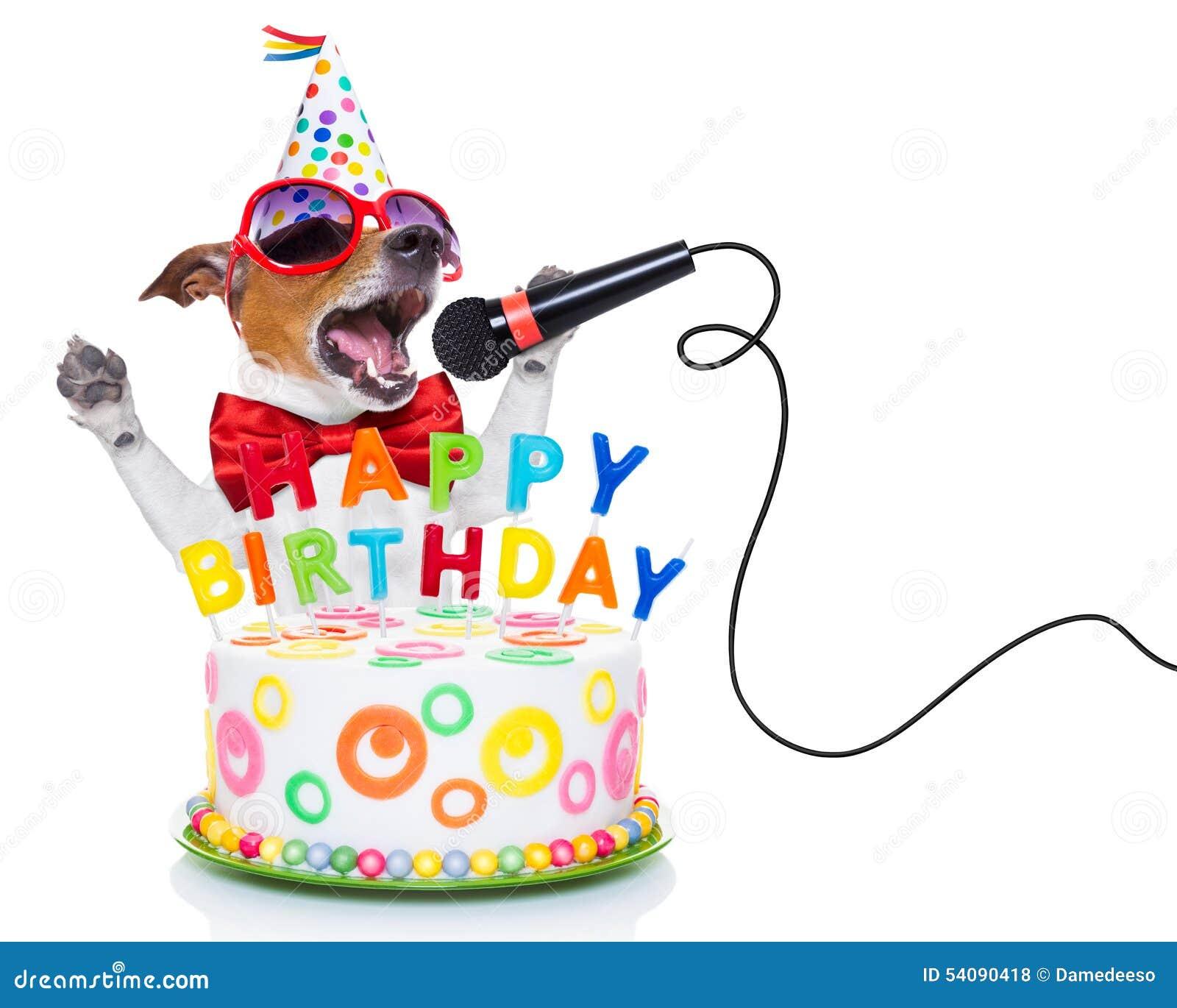 Alles Gute zum Geburtstaghund