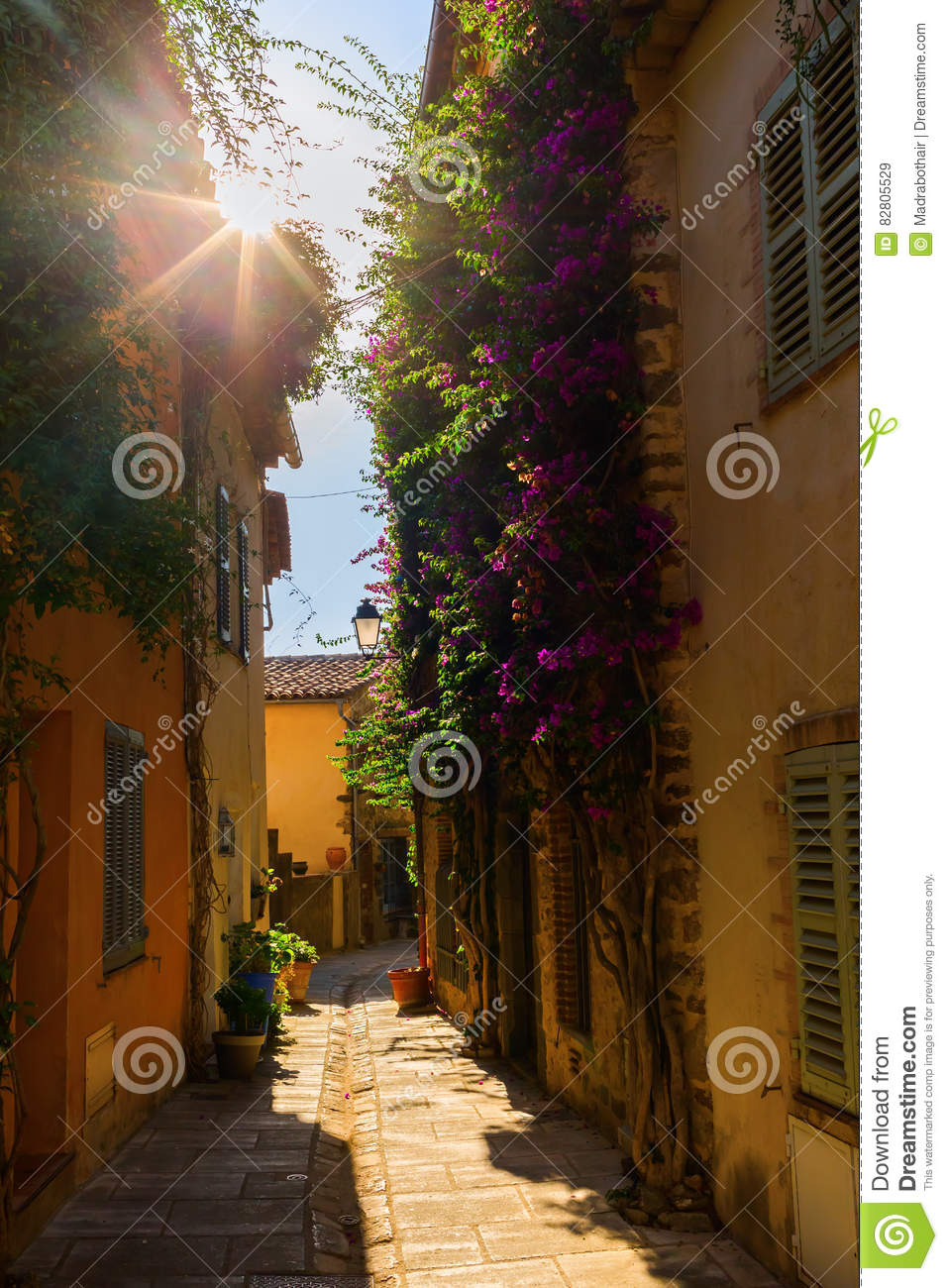 Alley in Grimaud, South France