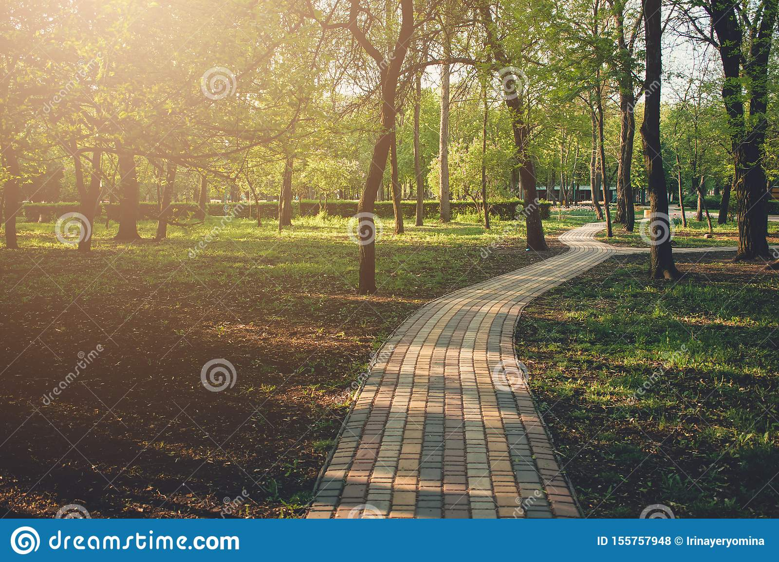 Alley, Pathway In The City Park In Sunlight. Cobbled Alley ...