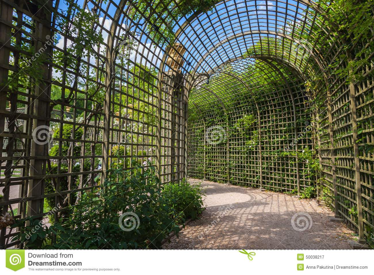 Alley In The Trellis In Gardens Of Versailles Palace