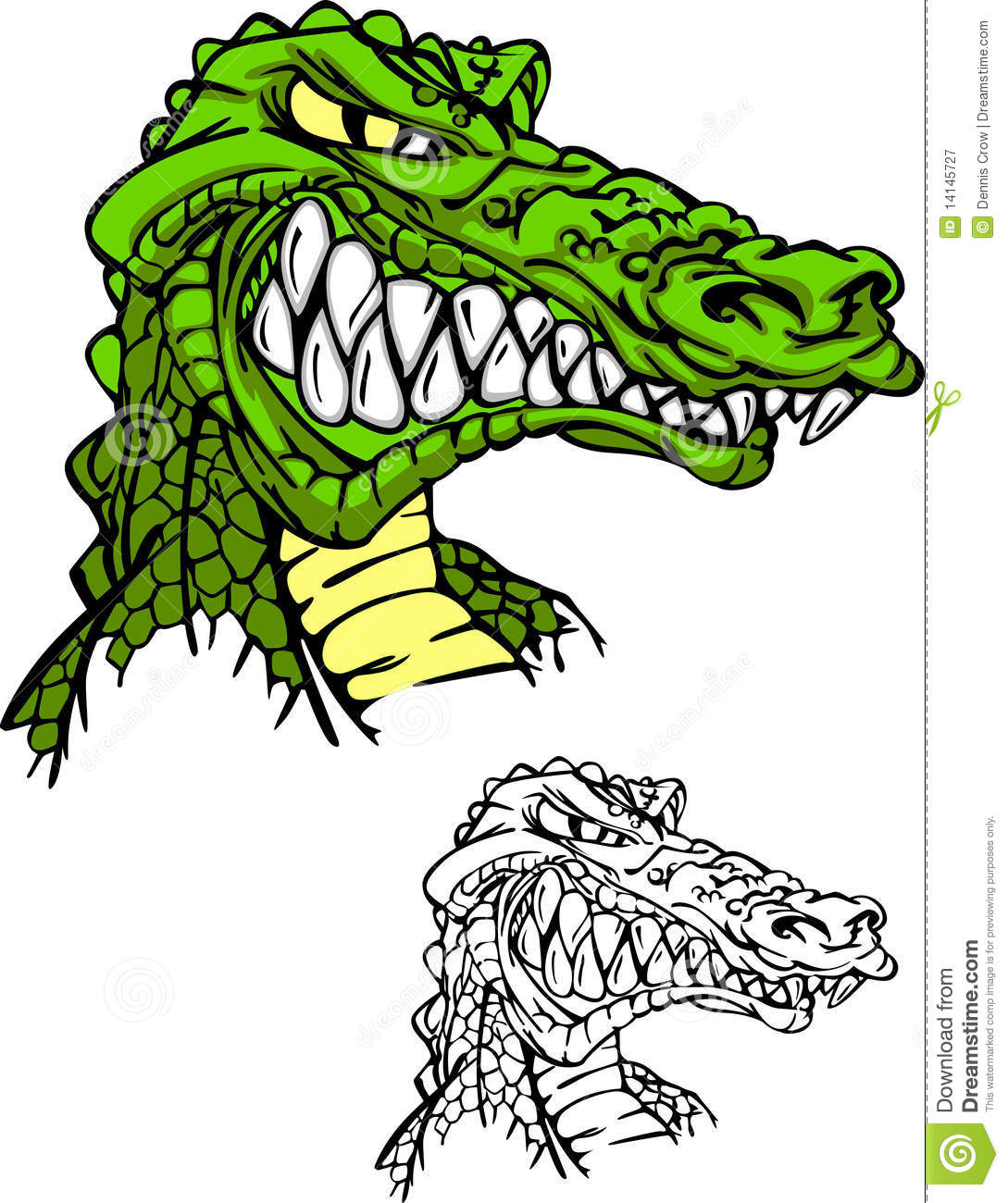 Cartoon Gator Head http://www.dreamstime.com/royalty-free-stock-photography-alligator-gator-head-logo-image14145727
