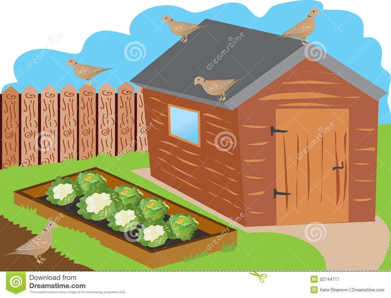 Allotment Garden Stock Vector - Image: 52744717
