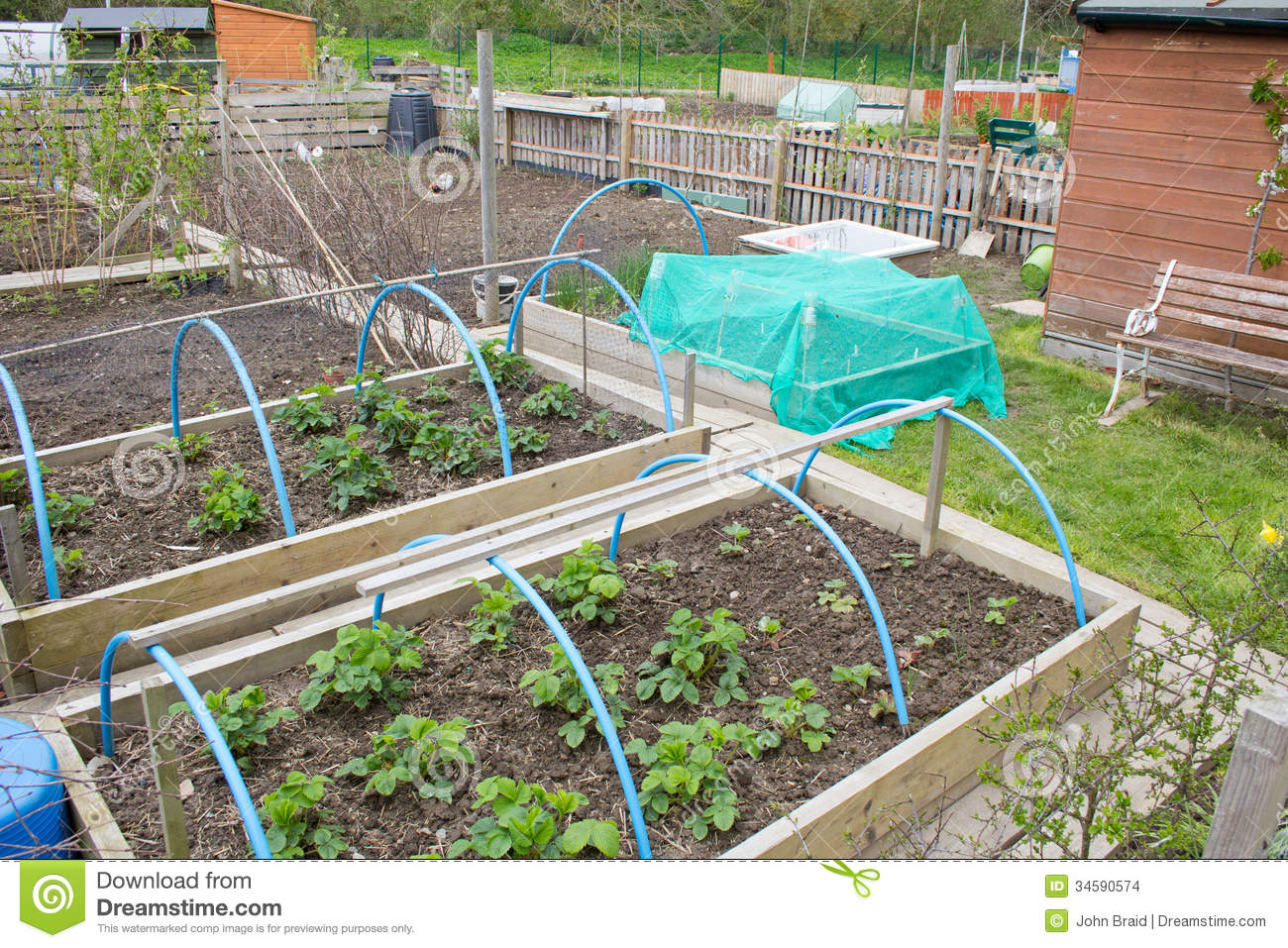 Allotment Garden Stock Images Image 34590574