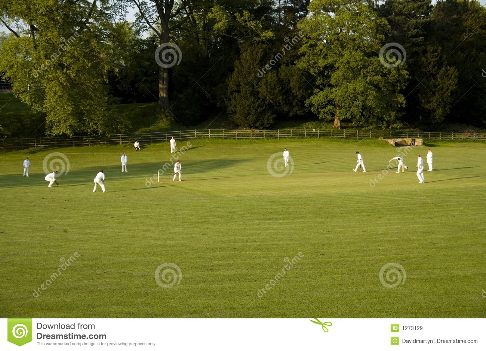Allumette de cricket sur un ashford de soirée d été dans le dist de crête de l eau
