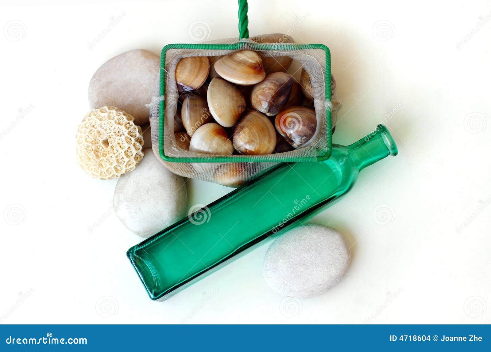 Almejas frescas - retén del día