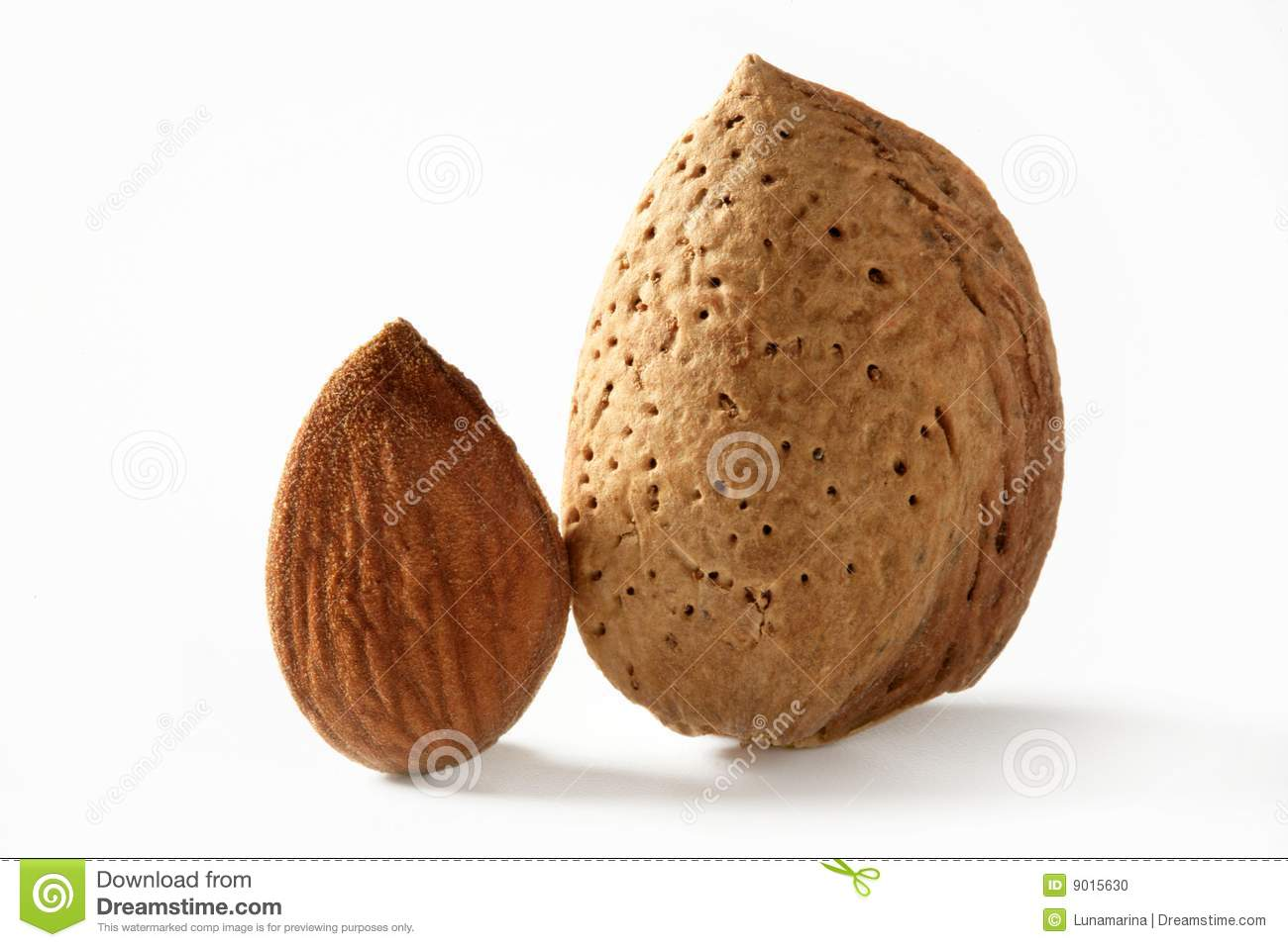 almond divorced singles personals There's no doubt about it the way people connect and find potential love interests has evolved quite a bit over the last decade online dating sites, as well as dating apps, are catered to.