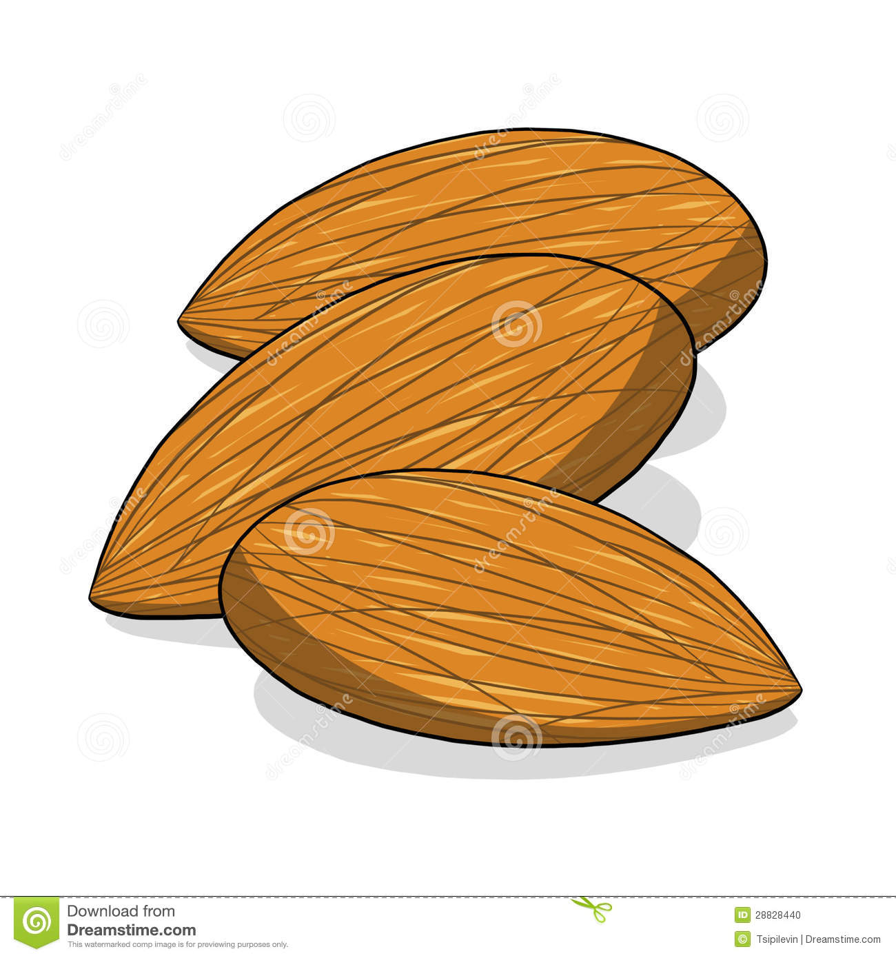 More similar stock images of almond nuts illustration