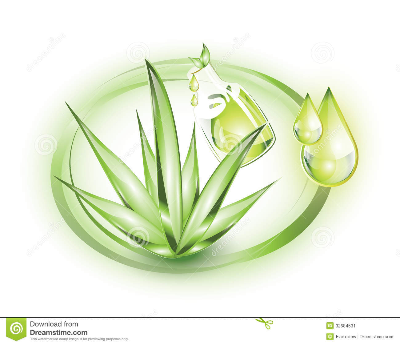 Aloe vera plant with extract from it in a bottle, in green circles.