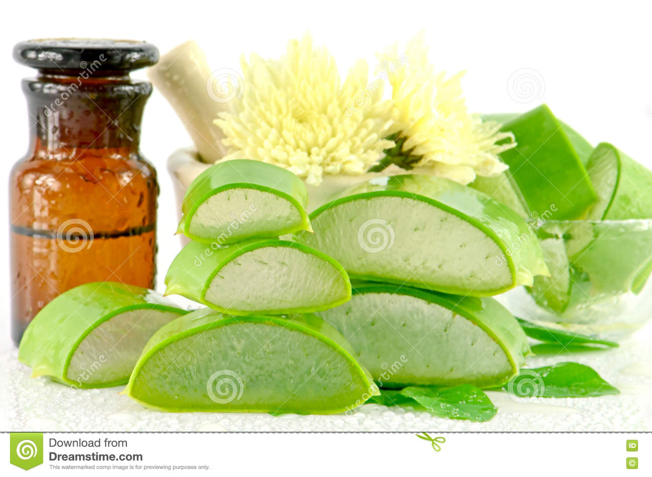 aloe vera hair and facial treatment paste mask ingredients stock photo image 66240677. Black Bedroom Furniture Sets. Home Design Ideas
