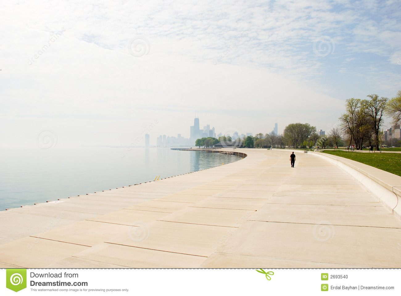 Alone in Chicago