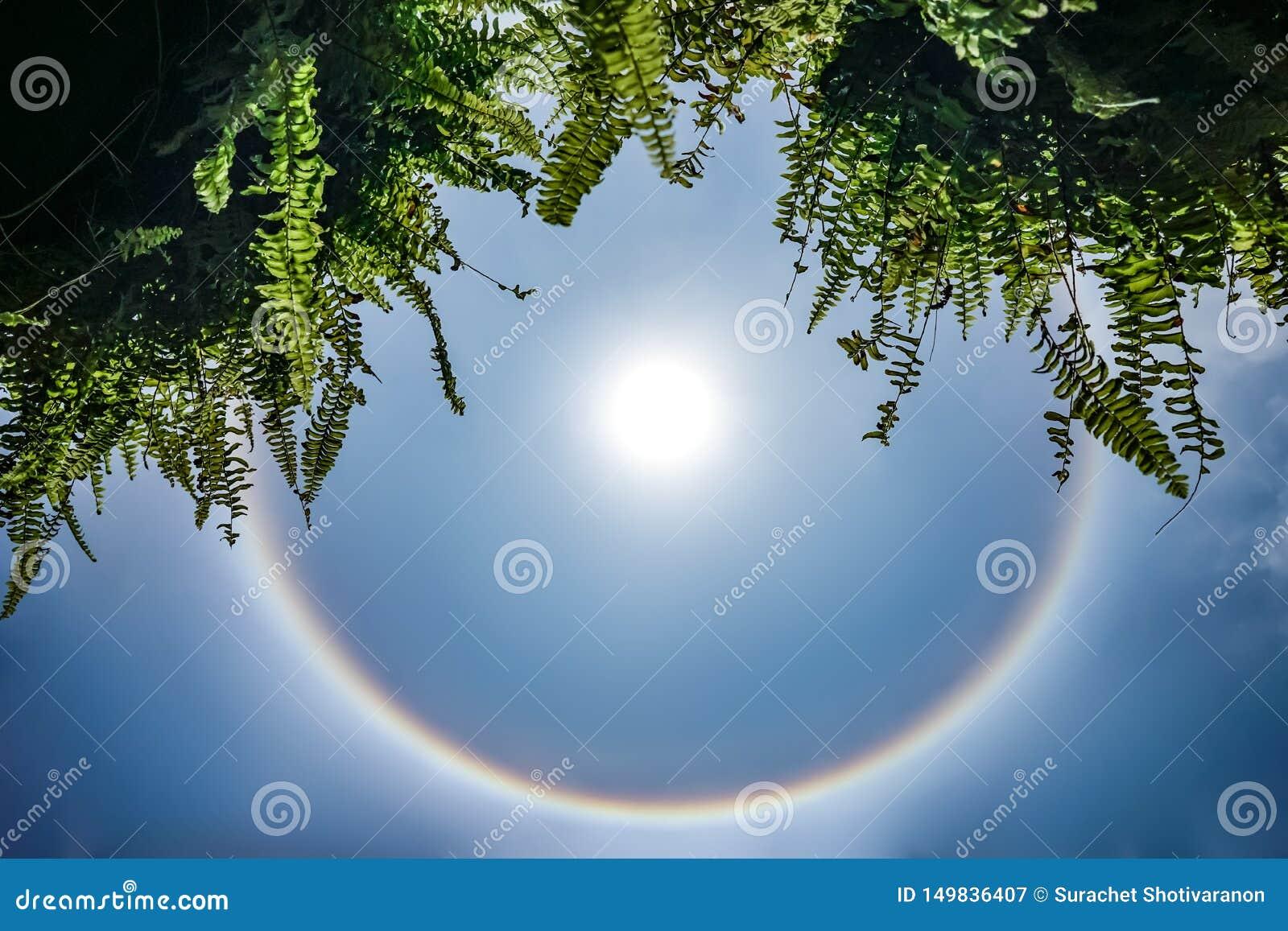 Alone di stupore del sole; l arcobaleno circolare intorno al sole nel cielo, questo momento è comparso in Tailandia nel 2016