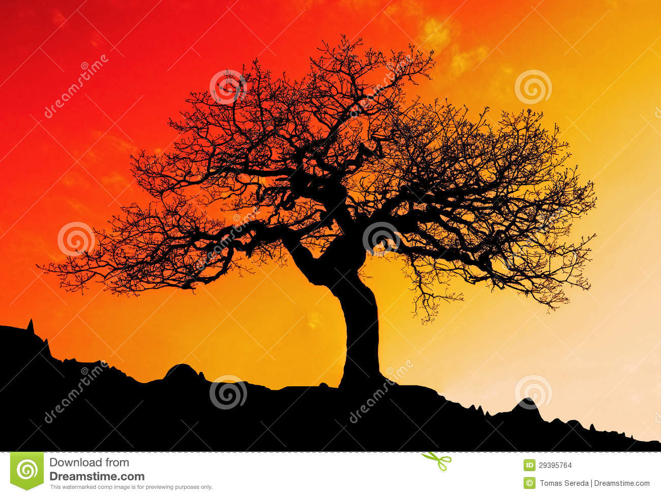 Alone tree with sun and color red orange yellow sky stock - Dreaming about the color red ...