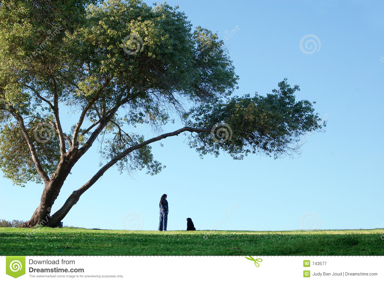 Alone Under The Big Tree Royalty Free Stock Photography - Image ...