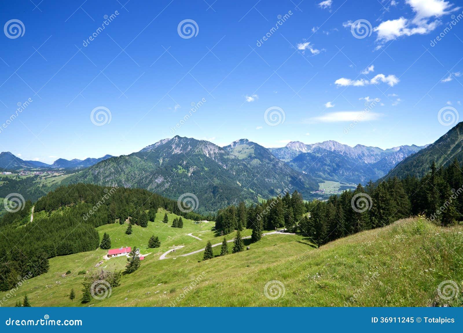 Alpejski łąkowy allgau Germany