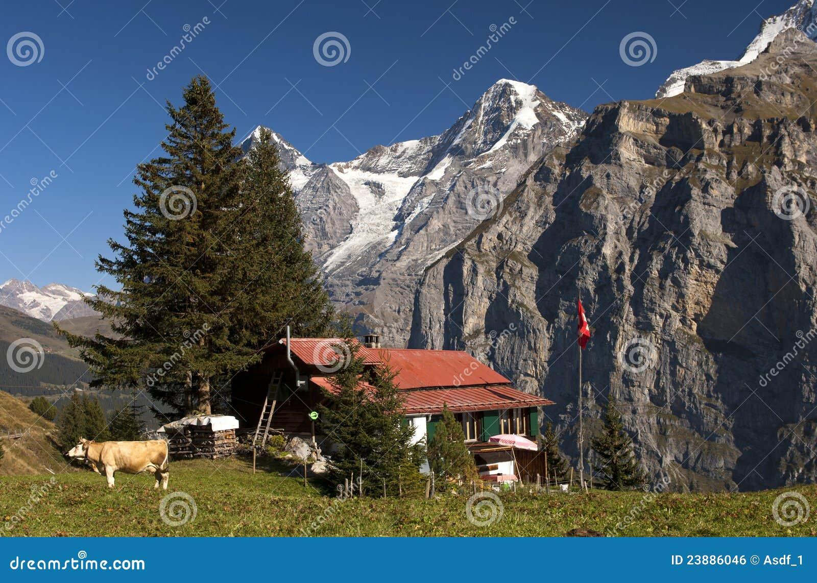 alpes avec la maison de ferme suisse image libre de droits image 23886046. Black Bedroom Furniture Sets. Home Design Ideas