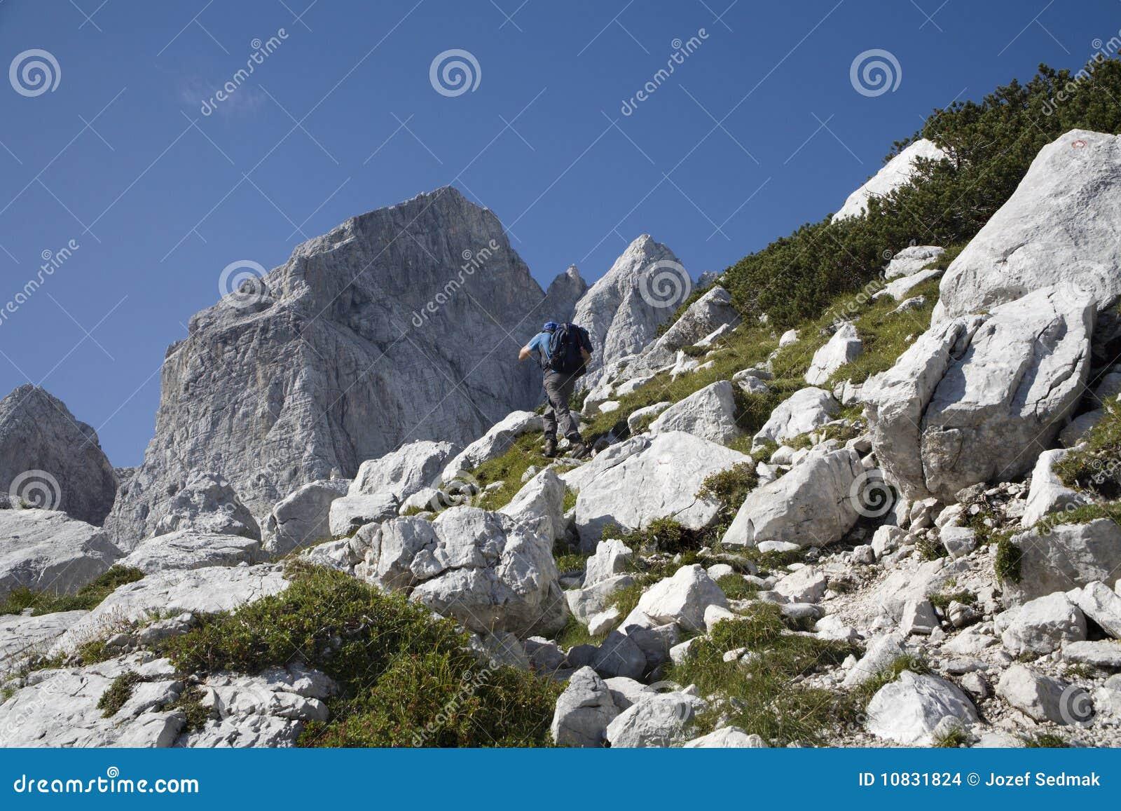 Alpes julianos - pico e alpinista de Jalovec