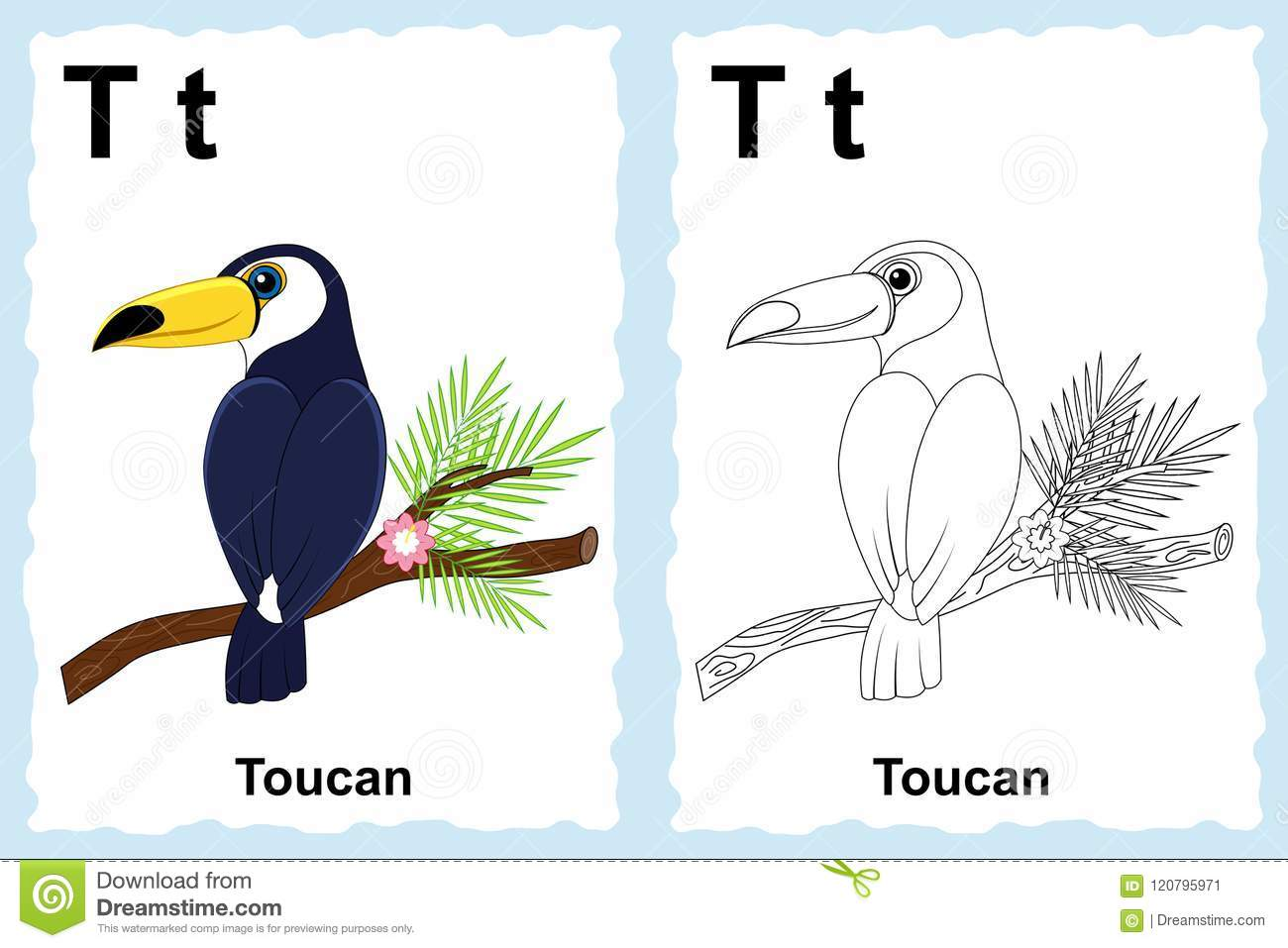 Alphabet coloring book page with outline clip art to color. Letter T. Toucan. Vector animals.