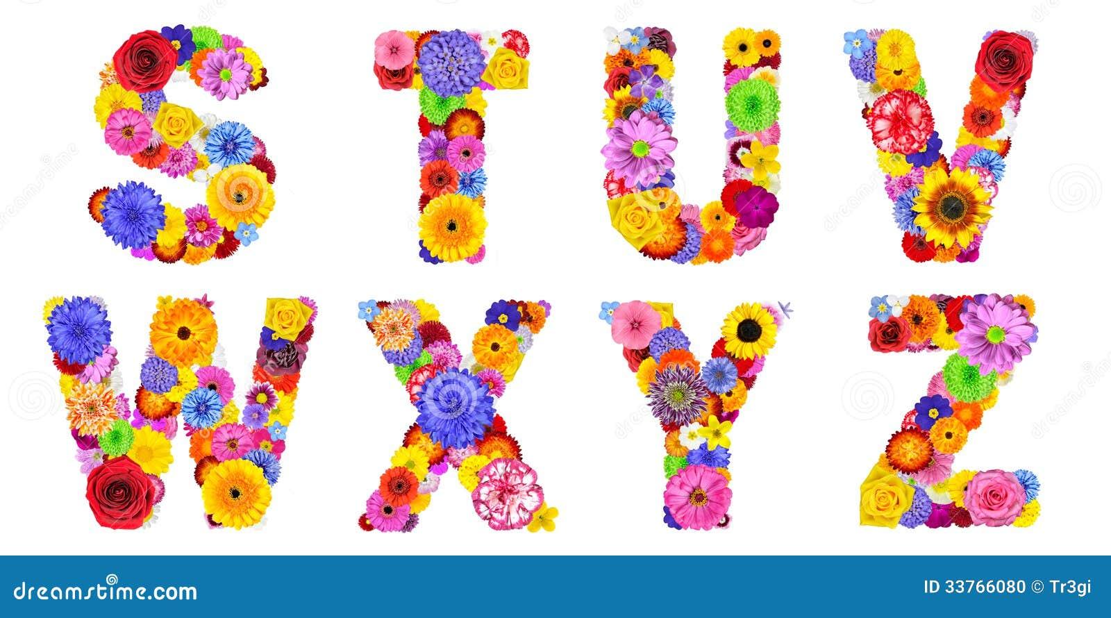 Alphabet floral d 39 isolement sur le blanc lettres s t u - Lettres alphabet originales ...