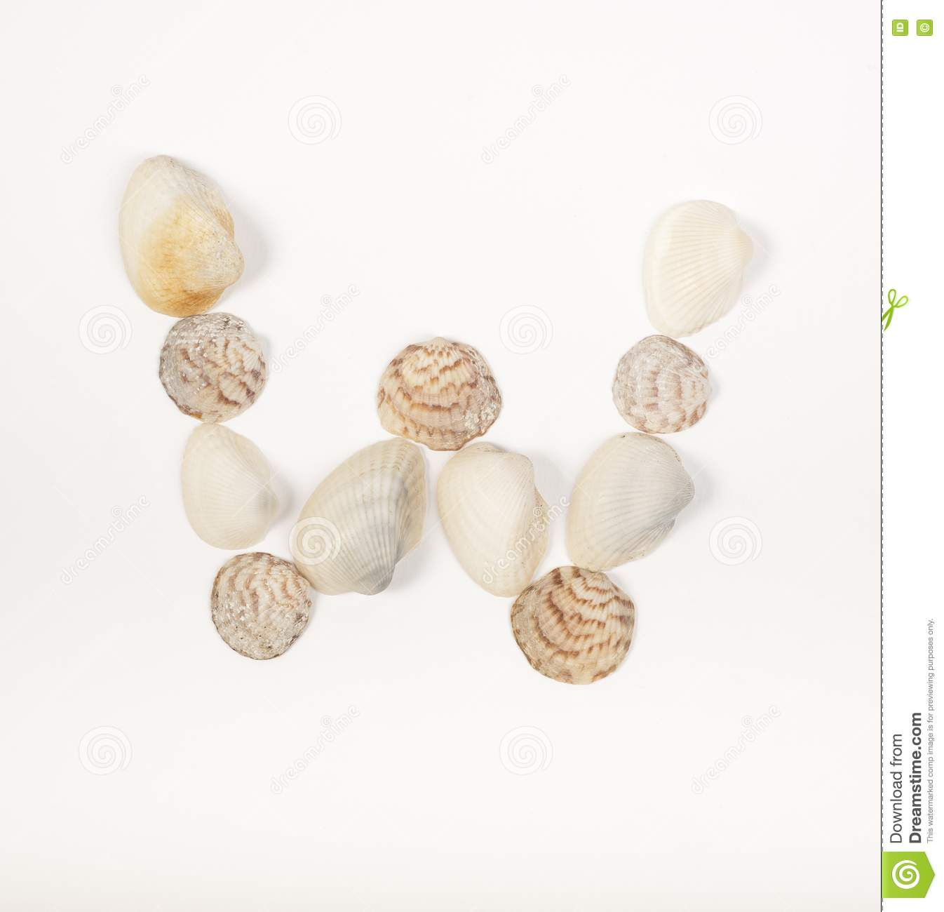 Alphabet letter made from sea shells royalty free stock for What are shells made of