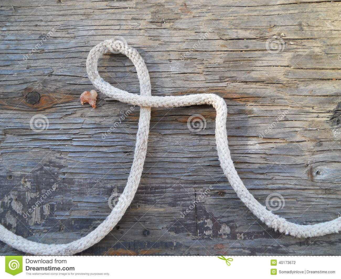 Alphabet Letter R Rustic Western Rope Stock Photo Image