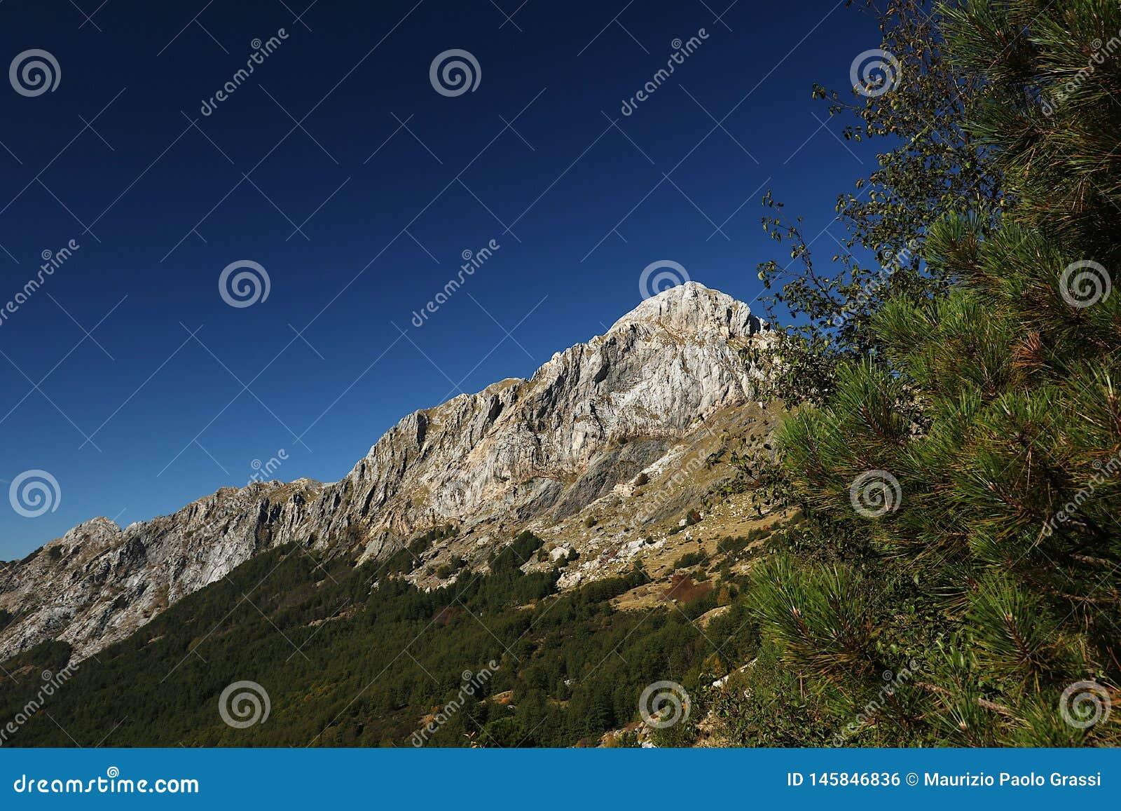 Alpi Apuane, Massa Carrare, Toscane, Italie Le dessus du Pizzo