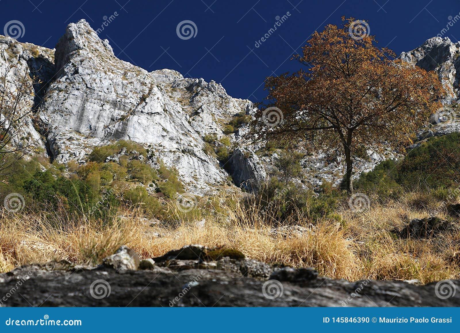 Alpi Apuane, Massa Carrare, Toscane, Italie Paysage avec le b?ti