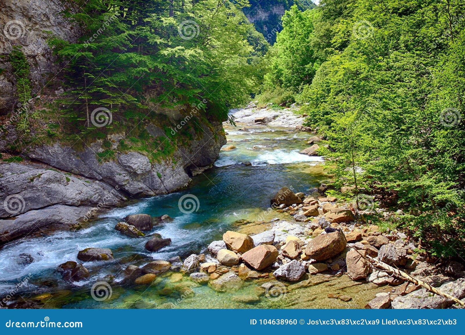 Download Alpien Ril En Mountainebos In Het Nationale Park Van Ordesa Stock Foto - Afbeelding bestaande uit milieu, berg: 104638960