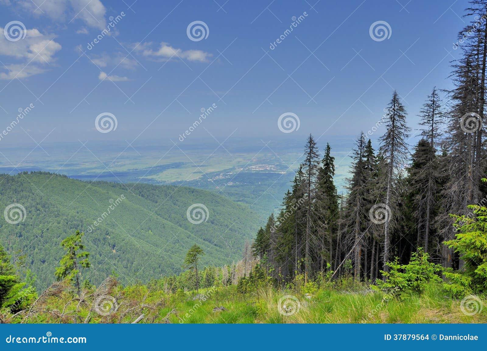 Alpiene die vallei vanaf de bovenkant wordt bekeken
